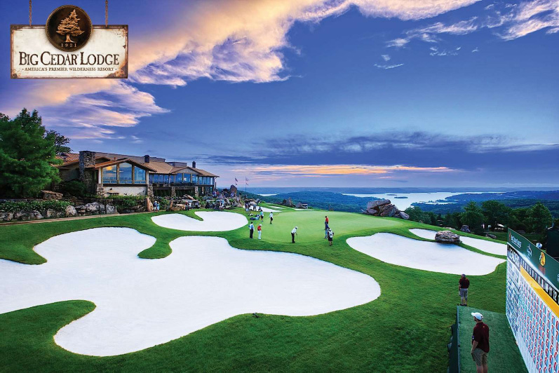 Putting Green CONTEST!! Synthetic Golf trip